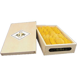 PREMIUM FRESH SEA URCHIN IN LARGE TRAY
