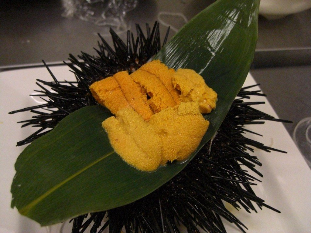About Sea Urchin Maruhide Marine Products